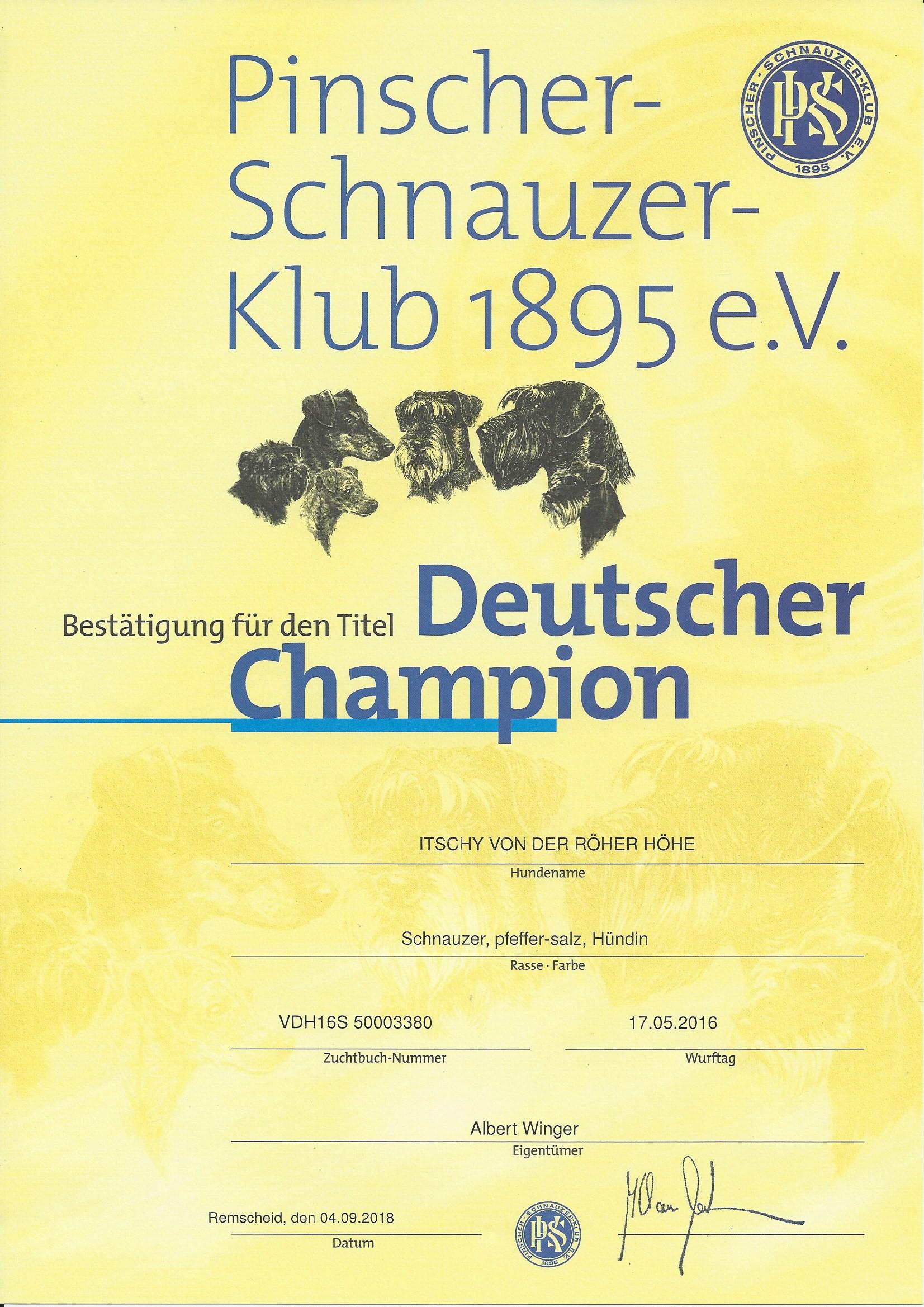 Schnauzer Klub PSK Deutscher Champion 2018